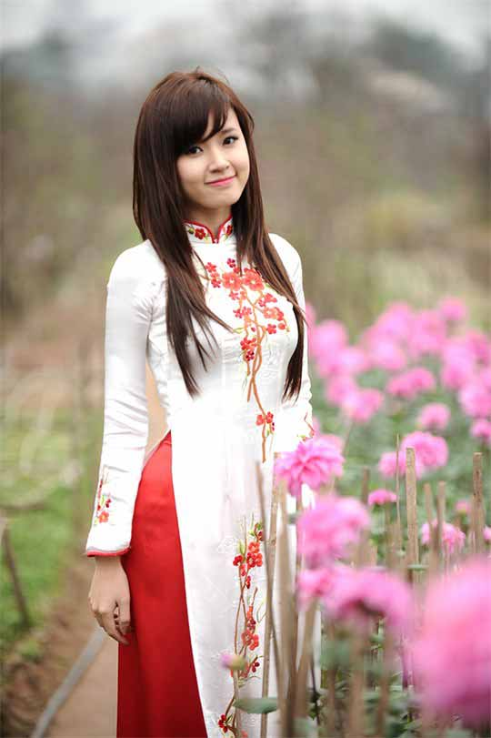 Beautiful Vietnamese Girl in a Vietnamese Dress