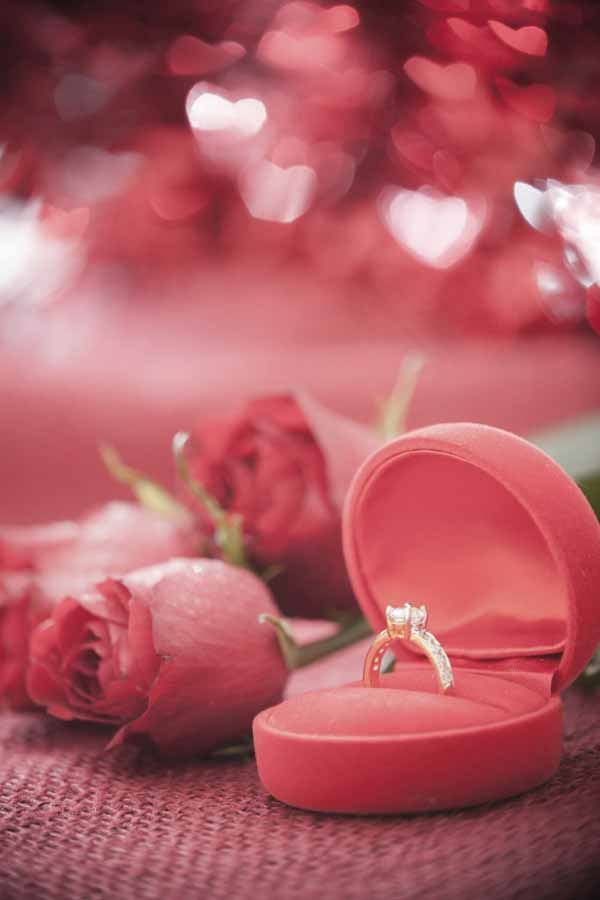 True love notion red rose and a proposal ring