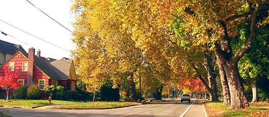 corvallis-bike-lanes-ii